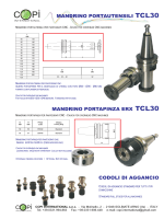 Mandrino Portautensili Mandrino Portapinza ERX TCL30