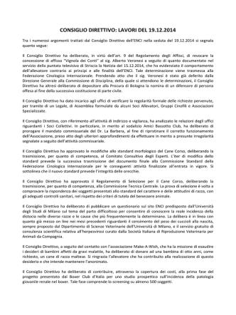 CONSIGLIO DIRETTIVO: LAVORI DEL 19.12.2014