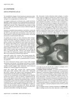 le castagne nella storia - Gruppo Flora Alpina Bergamasca