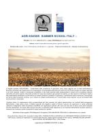 Programma Summer School