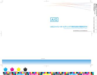 AIGジャパン・ホールディングス株式会社の現状2014(2013年度)