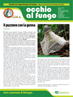 Occhio al fungo_n. 102_gennaio 2014(.Pdf 930 KB)