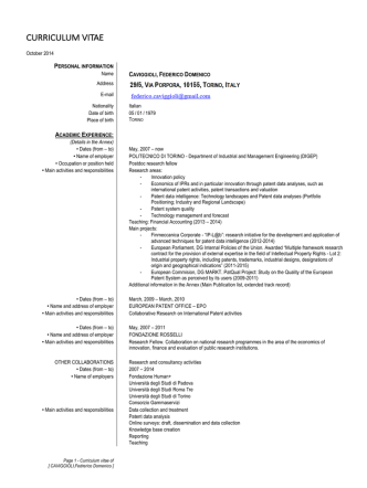 curriculum vitae - Innovation Studies group