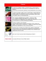 Clicca qui - Telecom Italia