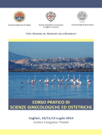 Programma Ginecologia 2014 def web (524,2 KB)