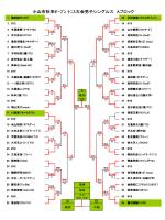 小山市秋季オープン テニス大会男子シングルス Aブロック B A