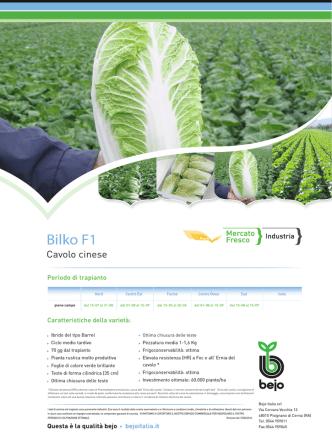 BilkoF1 - Bejo Italia