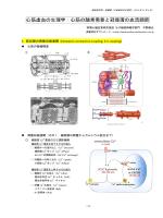 MD Cardiology-IHD 2013