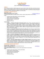 Curriculum Vitae - Piedra Consulting