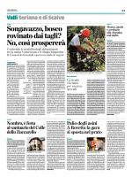 Taglio del bosco a Songavazzo