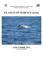 locandina glance on surface - Ordine dei medici veterinari della