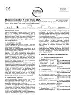 Herpes Simplex Virus Type 2 IgG - Ar