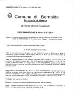 DETERMINA N.620 R.G. 2014