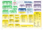 organigramma Torrente 2014-2015