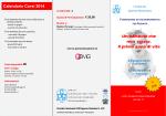 Versione in pdf
