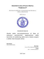 Download (5MB) - fedOA - Università degli Studi di Napoli Federico II