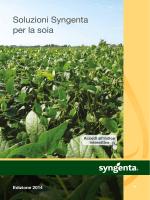Soluzioni Syngenta per la soia