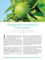 Il Bergamotto, preziosissimo frutto italiano