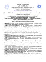 relazione finanziaria del dsga allegata alla ci 2013-2014
