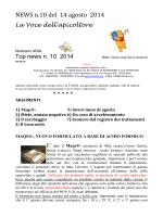 Notiziario Web n 10 2014