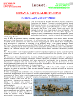 ROMANIA: CACCIA AL BECCACCINO