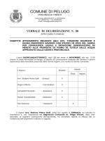 """Download Testo (File """"Delibera giunta nr. 88 dd. 13.11.2014"""" di"""
