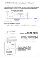 Lezione 8 (20 ottobre 2014)