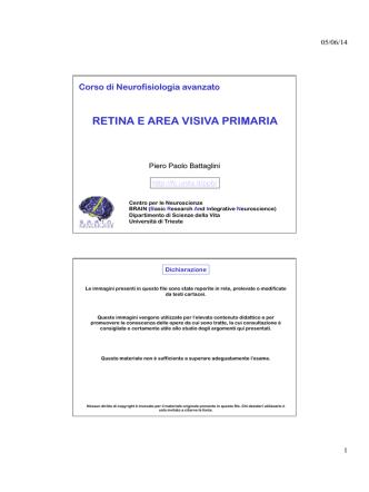 1 retina e area visiva primaria
