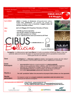 (Microsoft PowerPoint - Flayer Bollicine finale .ppt