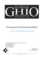 Documenti di Responsabilità