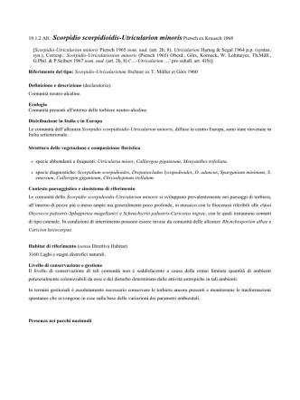 19.1.2 Scorpidio scorpidioidis