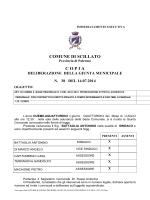 DELIBERA N.38 DEL 14.07.2014