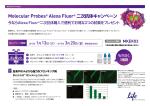Molecular Probes® Alexa Fluor® 二次抗体キャンペーン
