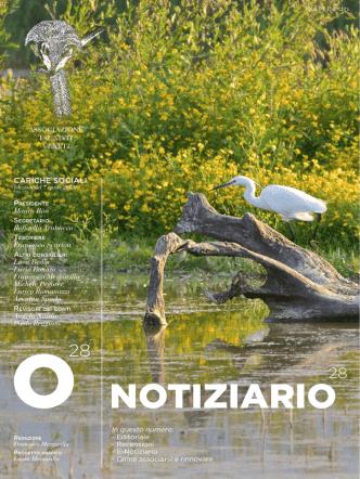 Clicca qui per scaricare il notiziario n. 27 in formato pdf.