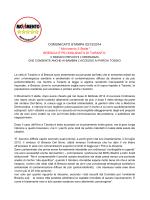 """Movimento 5 Stelle """" BRESCIA"""