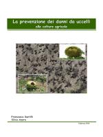 La prevenzione dei danni da uccelli alle colture