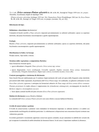 73.1.3 Erico carneae-Pinion sylvestris