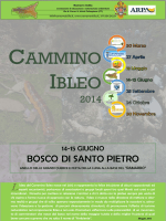 CAMMINO IBLEO - Comune di Caltagirone