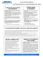 Allegato 1 - Associazione Commercianti di Luino