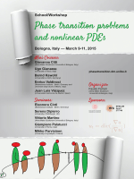 Poster  - Phase transition problems and nonlinear PDEs