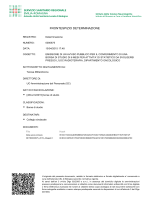 FRONTESPIZIO DETERMINAZIONE