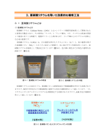 NO Li+ 3.亜硝酸リチウムを用いた効果的な補修工法