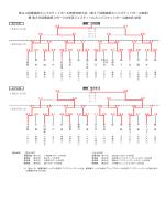 第37回青森県ミニバスケットボール教