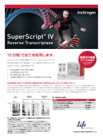 SuperScript® IV - Life Technologies
