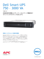 UPS100Vカタログ