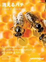 消えるハチ - Greenpeace