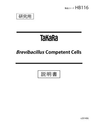 Brevibacillus Competent Cells