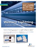 Western Lightning - 株式会社パーキンエルマージャパン
