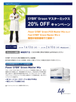 Power SYBR® Green Master Mix