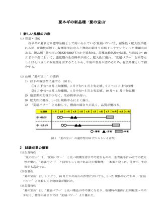 4 夏ネギの新品種`夏の宝山`(PDF:334KB)